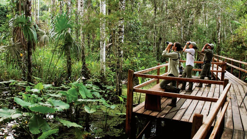 FEATURED LUXURY RESERVA AMAZONICA 1024x576 - ALBERGUE REFUGIO AMAZONAS -4 DÍAS