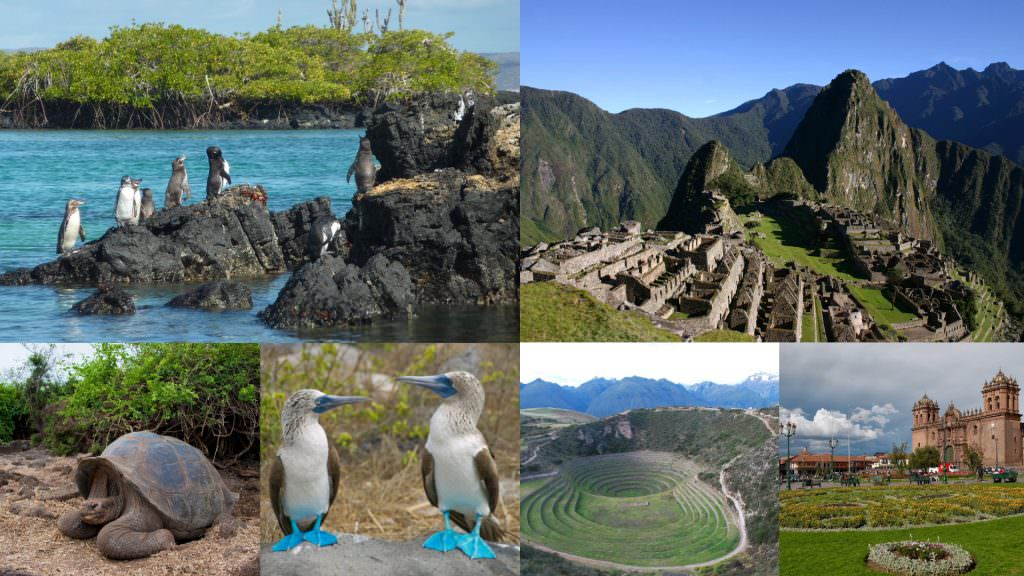 Machu Picchu and Galapagos Islands