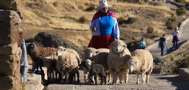 Tour 14 Días a Perú-boton